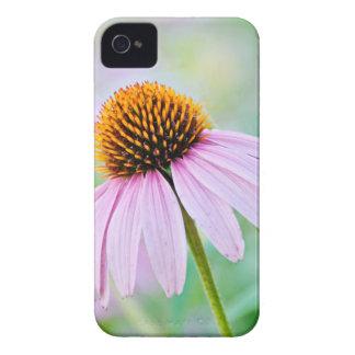 Purple Wildflowers iPhone 4 Cases