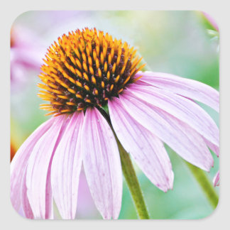 Purple Wildflowers Square Sticker