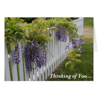 Purple Wisteria Thinking of You Card