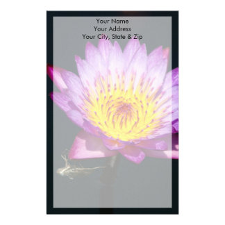 Purple & Yellow Lotus with Dragonfly Nymph Stationery