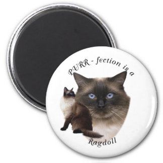 PURR-fection Ragdoll Magnet