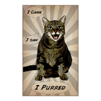 Purred Poster