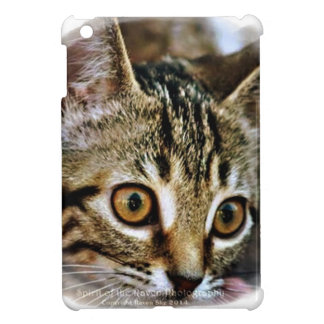 Purrfect Baby Kitten gift collection Case For The iPad Mini