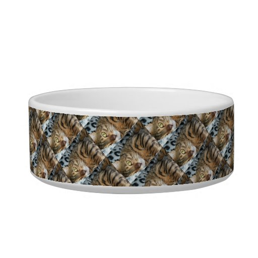 Purrfect Cat Dish Cat Food Bowls