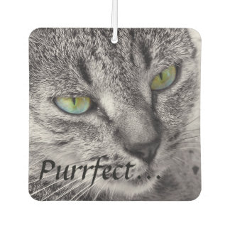 Purrfect tabby cat car air freshener