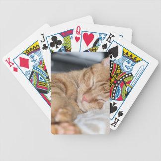 Purrfectly sleeping poker deck