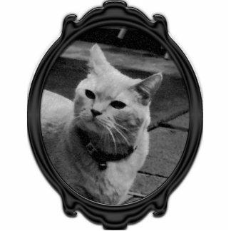 Puss Puss Magnet Photo Sculpture Magnet