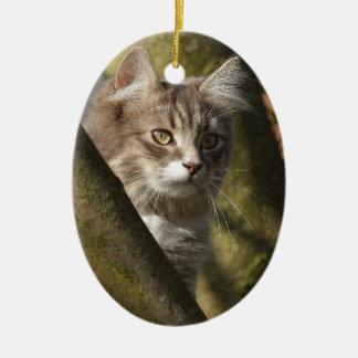 Pussy Cat Ceramic Oval Decoration