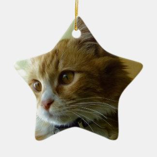 pussy cat ceramic star decoration