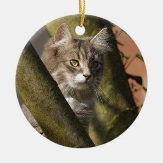 Pussy Cat Round Ceramic Decoration