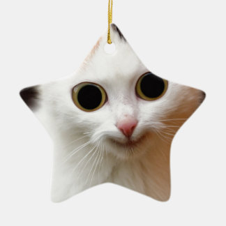Pussy white  Cat Ceramic Star Decoration