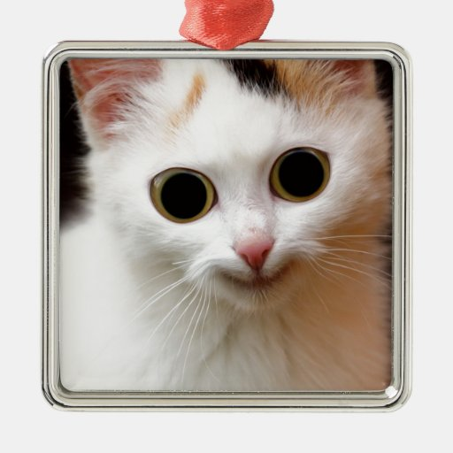 Pussy white  Cat Christmas Ornaments