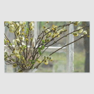 Pussy Willows By The Windowsill Rectangular Sticker