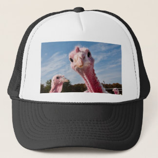 Put my head where? trucker hat
