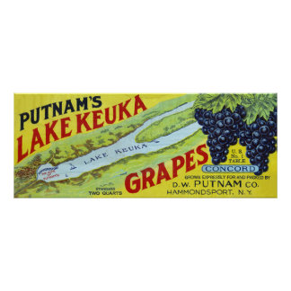 Putnam's Lake Keuka Concord Grapes Label Poster