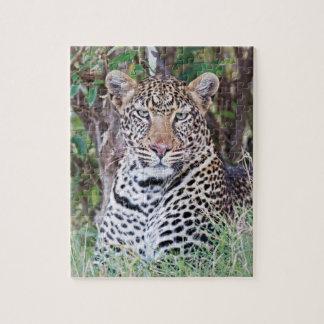 Puzzle 10x8 110 pieces - Leopard