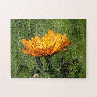 Puzzle - Calendula Blossom