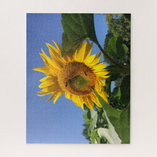 Puzzle Fall Sun Flower