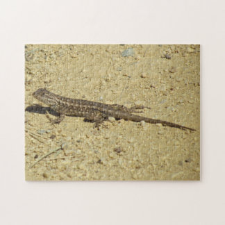 Puzzle - Lizard on Dirt Path