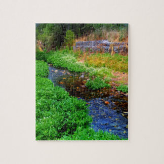 Puzzle of a Stream at a Botanical Garden