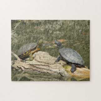Puzzle--Painted Turtles Jigsaw Puzzle