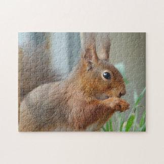 Puzzle squirrel Squirrel Écureuil - by GLINEUR