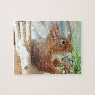 PUZZLE Squirrel ~ squirrels ~ by GLINEUR