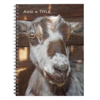 Pygmy Goat Notebook