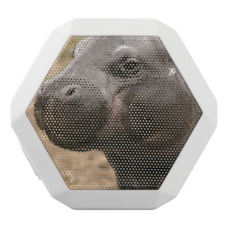 pygmy-hippo-1 white boombot rex bluetooth speaker