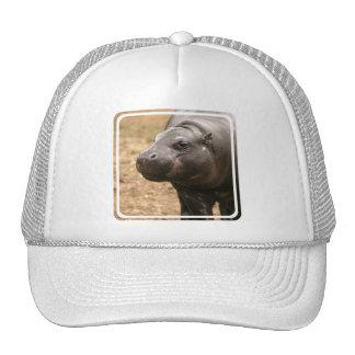 Pygmy Hippo Baseball Hat