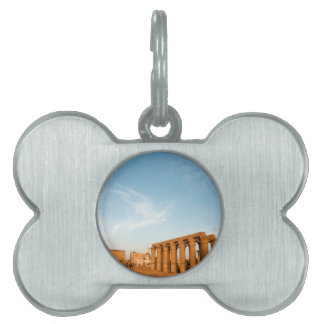Pylon and Colonnade, Luxor Temple Pet Name Tag