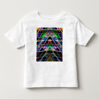 PYRAMID  - Enjoy Healing Energy Spectrum Toddler T-Shirt