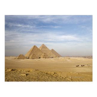 Pyramids Cairo, Egypt Postcard