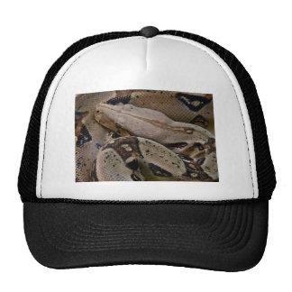Python Snake Trucker Hats