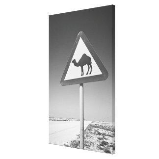 Qatar, Al Zubarah. Camel Crossing Sign-Road to Gallery Wrap Canvas