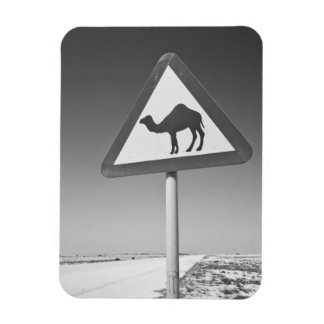 Qatar, Al Zubarah. Camel Crossing Sign-Road to Magnet