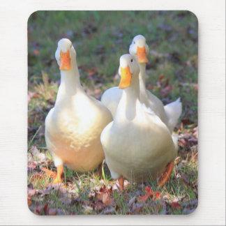 Quack attack mouse pad