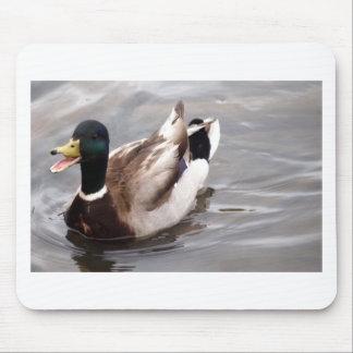 Quack Mouse Pads