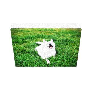 Quadro Krystal smile 25,4 x 20,3 cm Canvas Print