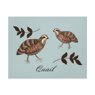 Quail Art Canvas Print
