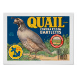 Quail Brand Contra Costa Bartletts Posters