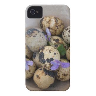 Quails eggs & flowers 7533 iPhone 4 Case-Mate case