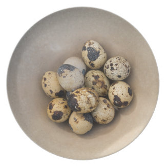 Quails eggs in a bowl plate