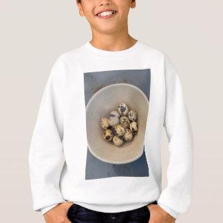 Quails eggs in a bowl sweatshirt