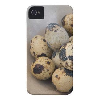 Quails eggs iPhone 4 case