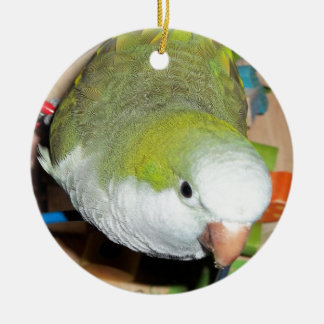 Quaker Parrot Ceramic Ornament