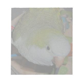 Quaker Parrot Notepad