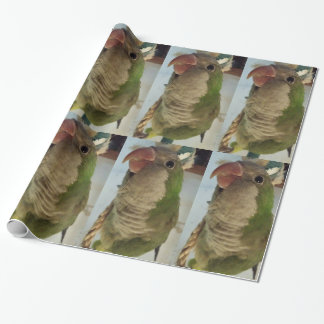 Quaker Parrot Wrapping Paper