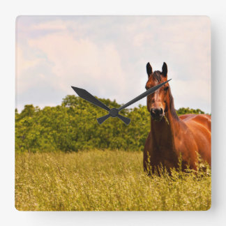 Quarter Horse Photo Wall Clock
