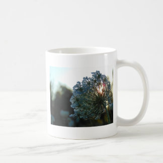 Queen Anne's Lace at Sunset Coffee Mug